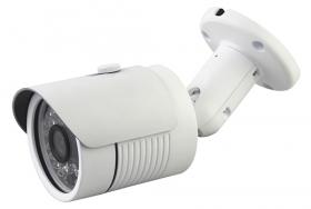 ციფრული კამერა -  LBH36S100  1MP